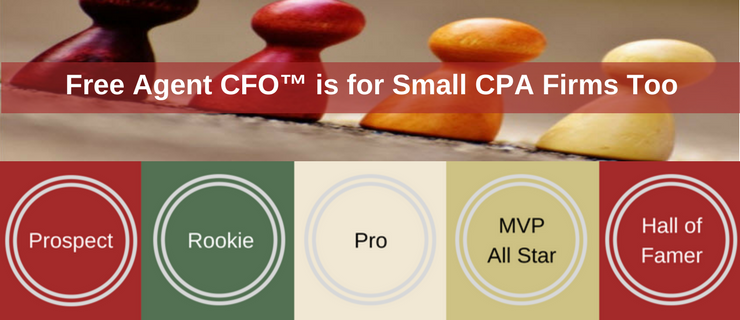 Small CPA Firms