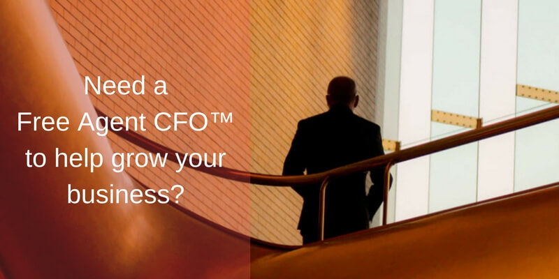 Grow Your Business with a Free Agent CFO™